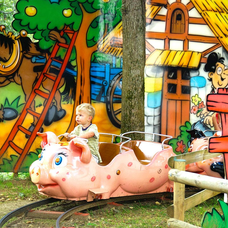 Attraction petits cochons